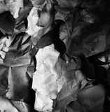 Background of fragments of crumpled paper, black and white Royalty Free Stock Image