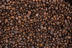 Background of fragrant brown beans Stock Images