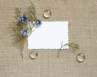 Background with frame. Canvas background with frame for text or photo Royalty Free Stock Photos