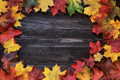 Background frame with autumn leaves on a wooden background Royalty Free Stock Photos