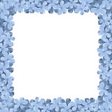 Background frame with blue plumbago flowers. Vector illustration. Stock Photos