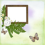 Background with frame, daisy, butterfly Stock Image