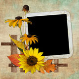 Background with frame and flowers Royalty Free Stock Photography