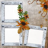 Background with frame and flowers Stock Photos