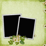Background with frame and flowers Stock Images