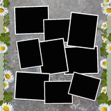Background with frame and flowers Stock Photography