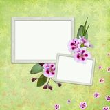 Background with frame and flowers Stock Image