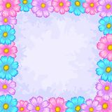 Background, frame from flowers. Vector floral background, frame from flowers cosmos Stock Image