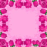 Background, frame from flowers. Floral background, frame from flowers red roses Royalty Free Stock Photography