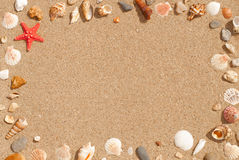 Background frame of seashells on sand stock photography