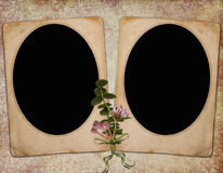 Background with frames Royalty Free Stock Photography