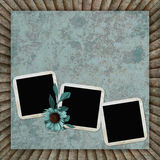 Background with frames and flower Stock Photography