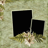 Background with frames and flowers Royalty Free Stock Images