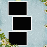 Background with frames and flowers Royalty Free Stock Photo