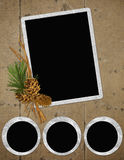 Background with frames and pinecone Royalty Free Stock Photos