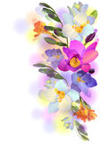 Background with freesia flowers and branches. Vector greeting background with pictorial freesia flowers Stock Photos