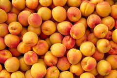 Background of fresh apricots Royalty Free Stock Images