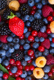 Background of fresh berries Royalty Free Stock Photography