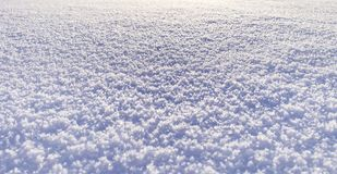 Background of fresh bright snow texture royalty free stock image