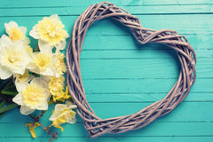 Background with fresh daffodils  and decorative heart Royalty Free Stock Images