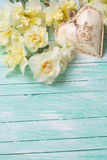 Background with fresh daffodils and heart Stock Photo