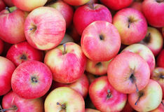 Background with fresh delicious juicy apples Stock Photos