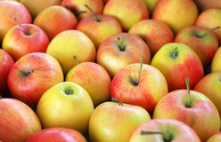 Background with fresh delicious juicy red apples. Stock Photos