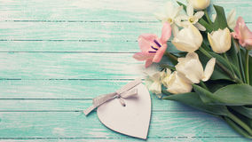 Background with fresh flowers Stock Images