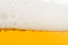 Background from fresh foamy beer. Background from fresh foamy beer with bubbles. Close-up Stock Photos