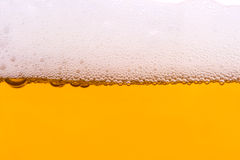 Background from fresh foamy beer. Stock Images