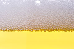 Background from fresh foamy beer. Stock Photography