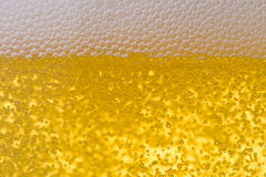 Background from fresh foamy beer. Stock Photo