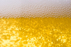 Background from fresh foamy beer. Royalty Free Stock Photos