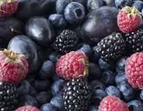 Background of fresh fruits and berries. Ripe blackberries, blueberries, plums and raspberries. Mix berries and fruits. Top view. Background berries and fruits royalty free stock photo