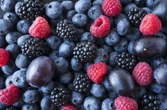 Background of fresh fruits and berries. Ripe blackberries, blueberries, plums, raspberries. Mix berries and fruits. Top view. Background berries and fruits royalty free stock image