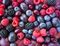 Background of fresh fruits and berries. Ripe blackberries, blueberries, plums, red berries, raspberries. Mix berries and fruits. Top view. Background berries royalty free stock photography