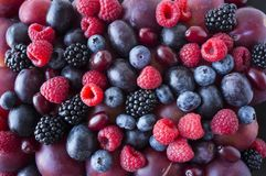 Background of fresh fruits and berries. Ripe blackberries, blueberries, plums, red berries, raspberries. Mix berries and fruits. T. Op view. Background berries royalty free stock photography