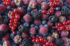 Background of fresh fruits and berries. Ripe blackberries, blueberries, red currants and raspberries. Mix berries and fruits. Top view. Background berries and stock images