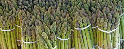 Background with fresh green asparagus Stock Photography