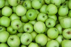 Background of fresh green Granny Smith apples Stock Photography