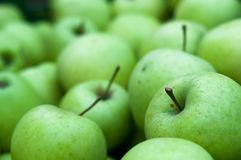 Background of fresh green Granny Smith apples Royalty Free Stock Photo