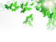 Background with fresh green leaves. Shapped as butterly vector illustration