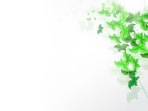 Background with fresh green leaves Royalty Free Stock Images