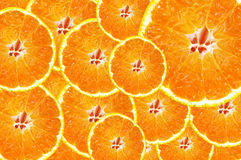 Background of fresh juicy orange slices Stock Image