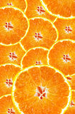 Background of fresh juicy orange slices Royalty Free Stock Photo