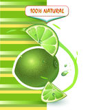 Background with fresh lime Stock Images
