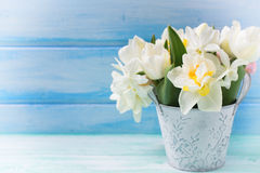 Background with fresh narcissus and tulips in bucket Stock Images