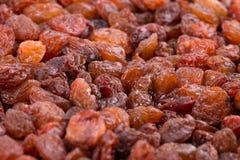 Background of fresh raisins. Raisins closeup. Fresh raisins close-up. Background of natural raisins Royalty Free Stock Photo