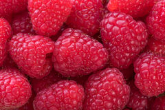 Background with fresh raspberries. Closeup Royalty Free Stock Photos