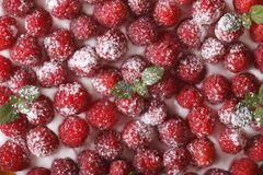 Background of fresh raspberries with cream macro. horizontal. Background of fresh raspberries with white cream macro. horizontal Royalty Free Stock Photos